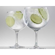 Calici gin tonic Special Bar in vetro cl 70