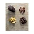Cioccolatini di Danilo Freguja