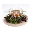 Coppetta Sea 100% Chef in vetro borosilicato cl 12,5