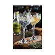 Calice Ambassador con decoro Infusion Gin in vetro cl 55