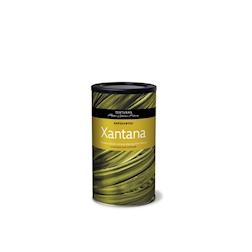 Texturas Xantana gr 600