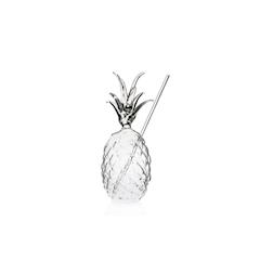 Bicchiere Ananas 100% Chef con cannuccia in vetro cl 30