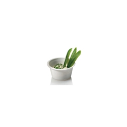 Coppetta biodegradabile tonda in polpa di cellulosa cl 6