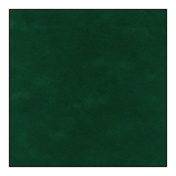 Coprimacchia Pack Service in Airspun cm 100 x 100 verde