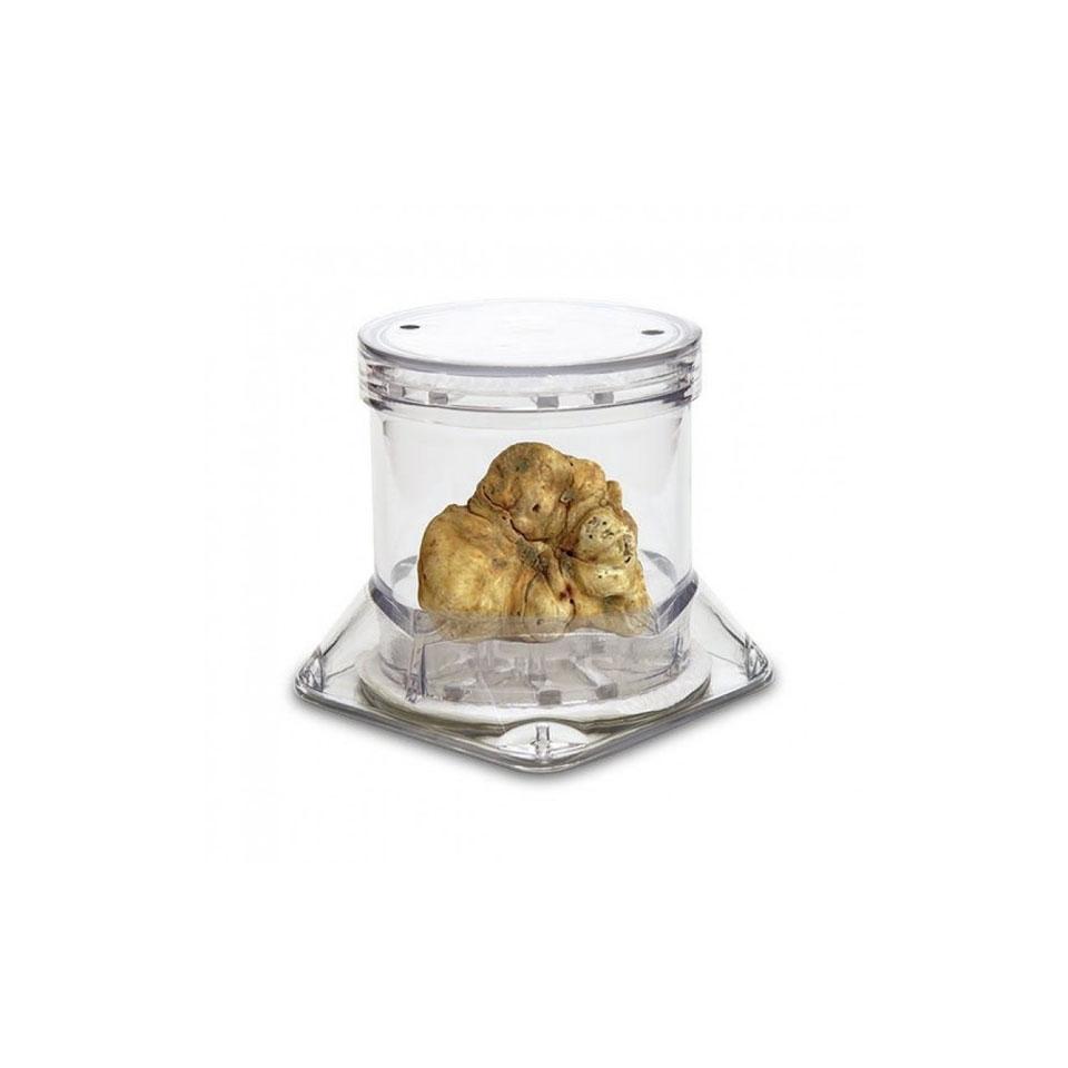 Contenitore tartufo Tuberpack Sanelli Ambrogio in acrilico trasparente cm 7,8