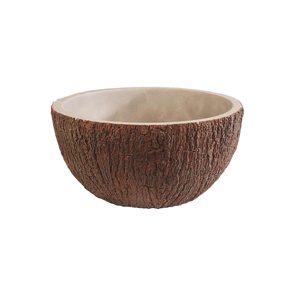 Coppa coconut in cemento